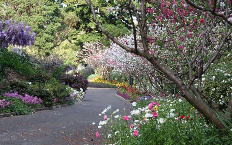 botanicgardenssydney