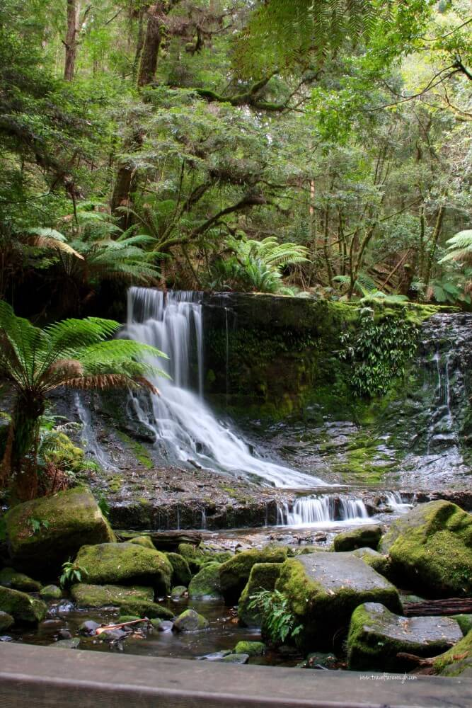 Our New Favourite National Park: Mount Field, Tasmania