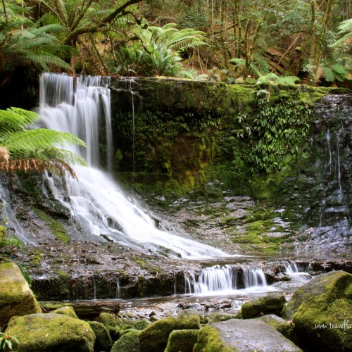 Mount Field National Park | Travel Far Enough