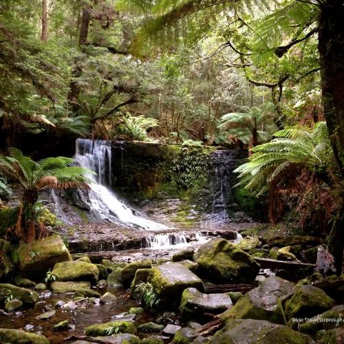 Horseshoe Falls, Mount Field