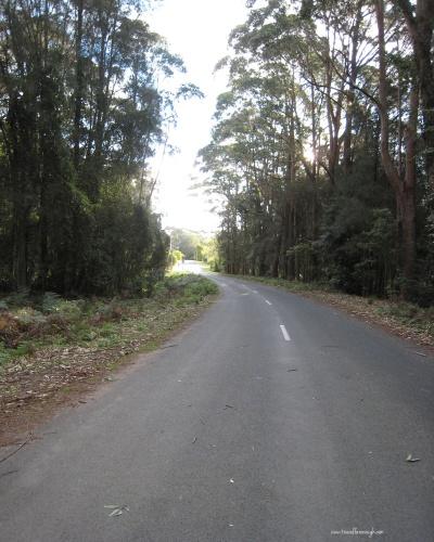 Road to Reclusiveness