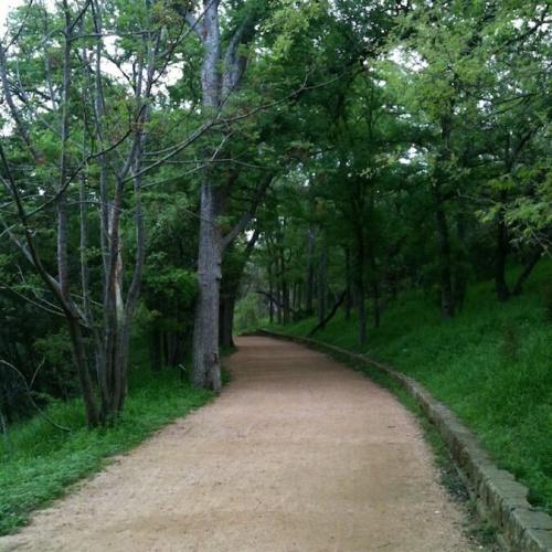 Brushy Creek Regional Park