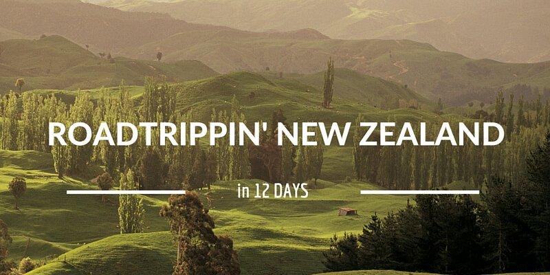Roadtrippin'NZ.800x600