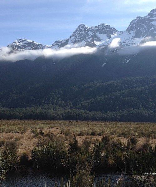Views from Milford-Te Anau Road