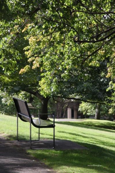 St.Davids Park
