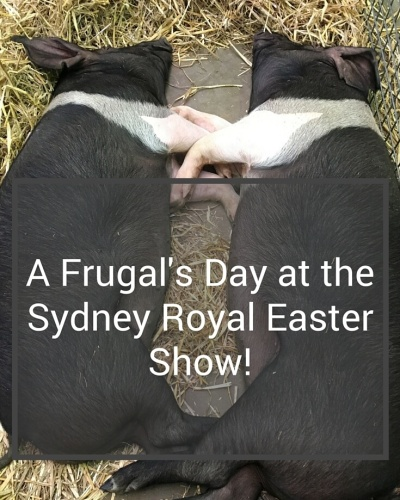 Easter Show.PIN copy 2