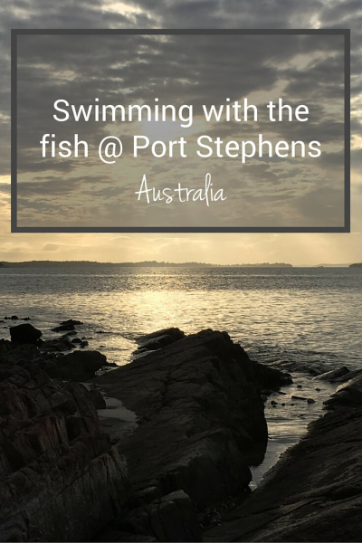 Fish Port Stephens.PIN (1)