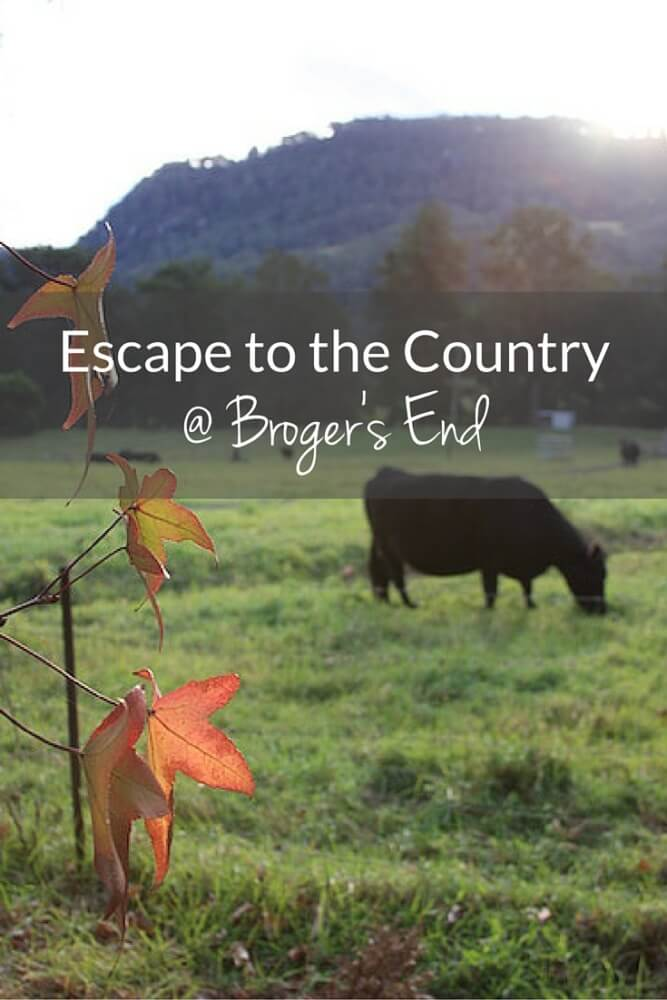 If you want the quintessential Australian country getaway, Broger's End is it. If I could sum up Broger's End I would say: Relaxed. Settling. Eco-friendly. And, above all, peaceful. I could seriously move here.