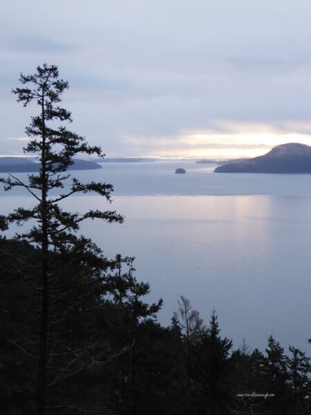 Getting Off the Grid on Orcas Island