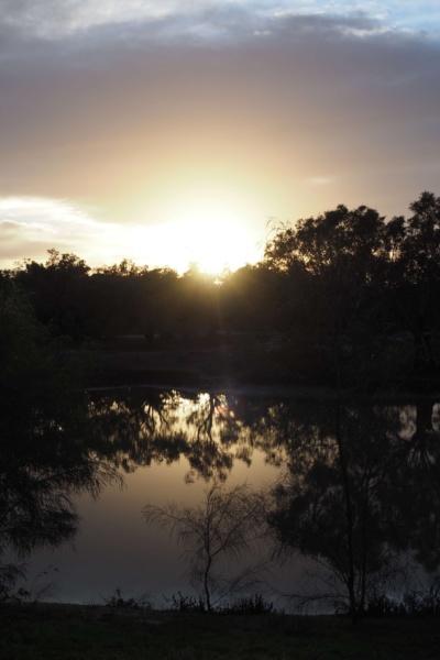 Sunrise on the Billabong