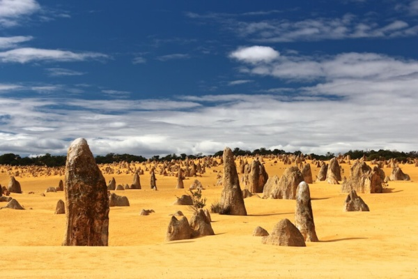 Termite mounds.OutbackNSW