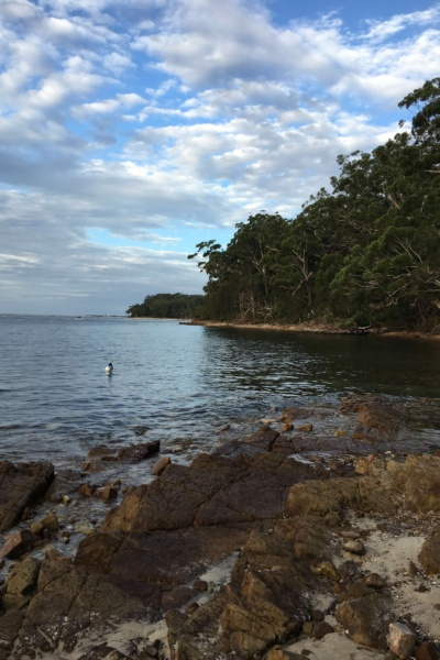 One of our favourite places to snorkel in the Hunter.  Fly Point at Port Stephens.
