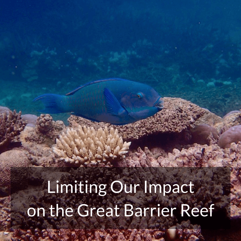 Limiting Our Impact on the Great Barrier Reef