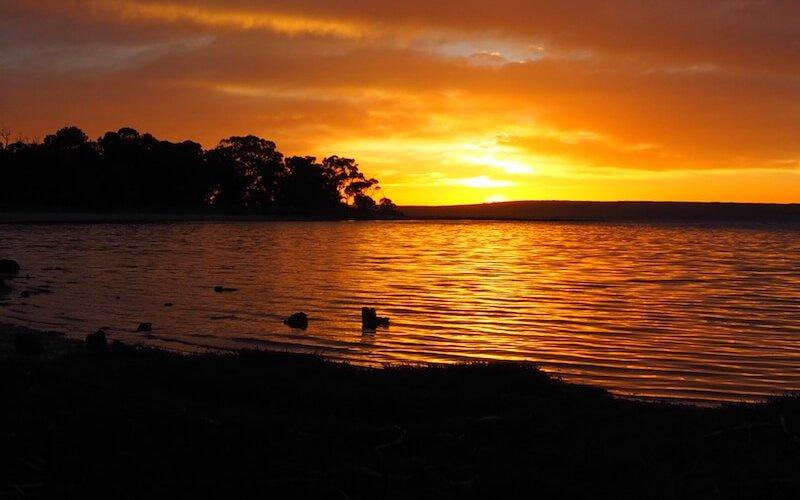 American River Sunrise