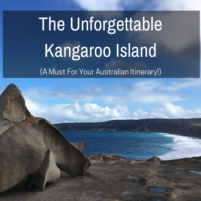 The Unforgettable Kangaroo Island. A Must For Your Australian Itinerary.