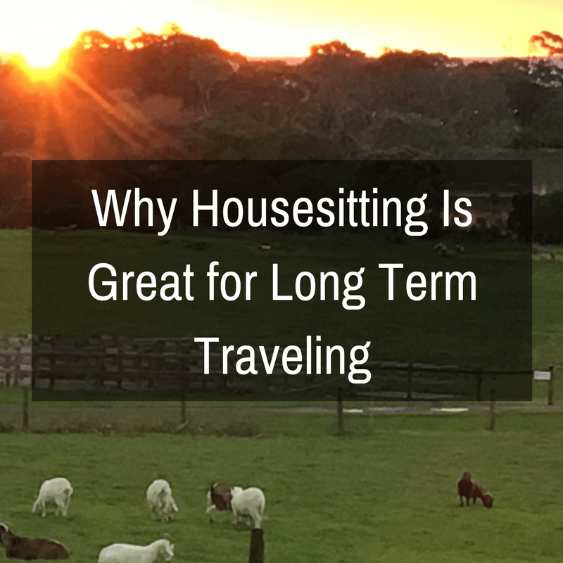 Why Housesitting Is Great for Long Term Traveling