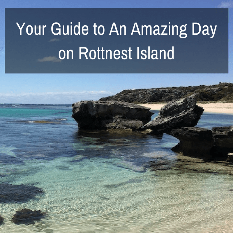 Your Guide to An Amazing Day on Rottnest Island