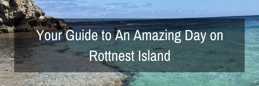 Your Guide to An Amazing Day on Rottnest Island.POST