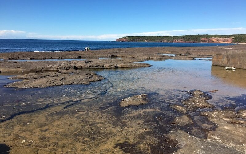 Merimbula rock pools
