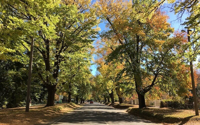 Bright, Victoria, in Autumn.