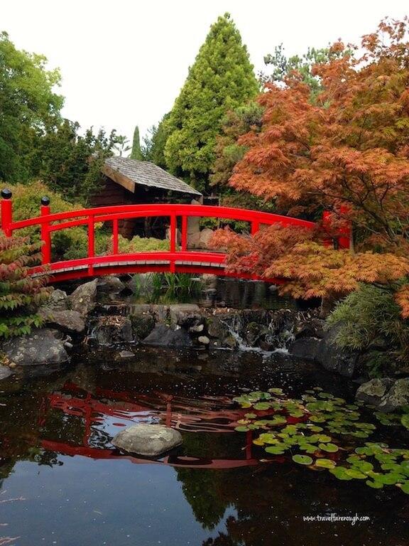 Japanese gardens within the Tasmanian Royal Botanic Gardens