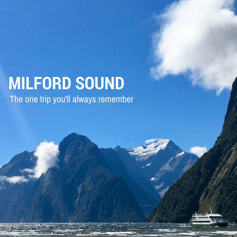 Milford Sound.  The One Trip You'll Always Remember.