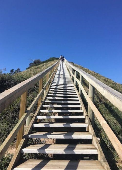 The stairs to the lookout at the Neck, Bruny