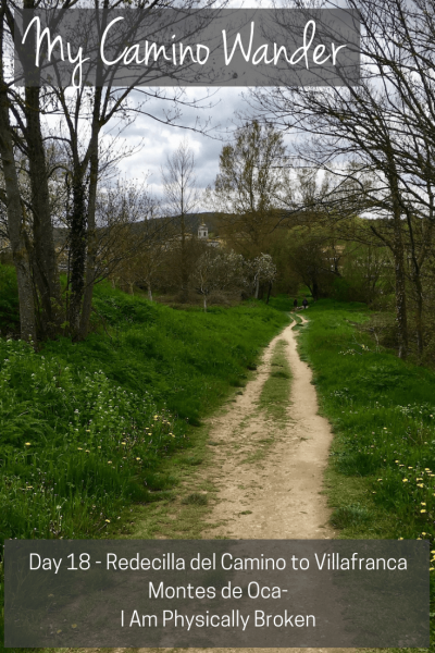 Day 18 of the Camino Wander | Travel Far Enough | Around 24km my left calf/ankle really started hurting and I essentially crawled into town. I took a picture of a lovely, very picturesque trail that was probably the hardest part of my entire walk - and it was flat!!