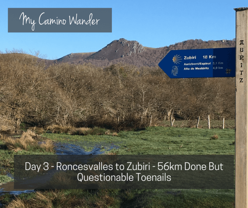 Day 3 of the Camino Wander – 56km Done but Questionable Toenails