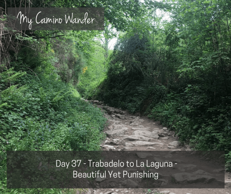 Day 37 of the Camino Wander – Beautiful Yet Punishing