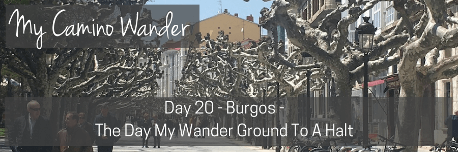 day 20 of the camino wander.POST