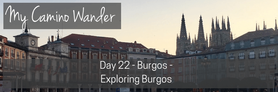 day 22 of the camino wander.POST
