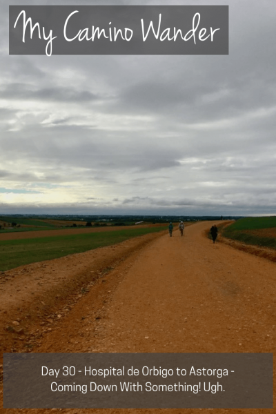Day 30 of the Camino Wander | Travel Far Enough | Like every Spanish mile, what was to be 16km turned into 21km. Oh well. I made it another day. I have now walked 478km. Now a two day rest in Astorga.