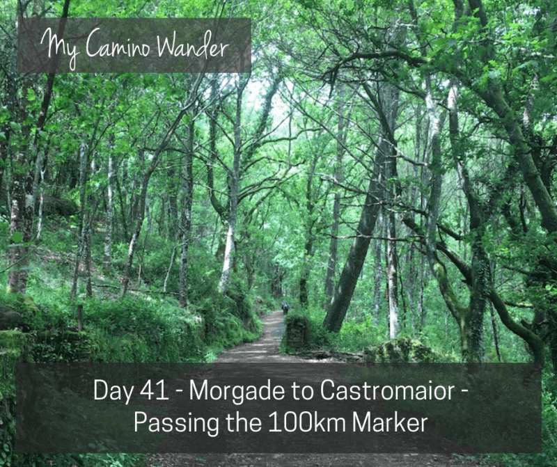 Day 41 of the Camino Wander – Passing the 100km Marker