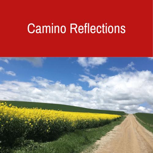 Camino Reflections
