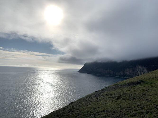 Foggy Mornings on Maria Island